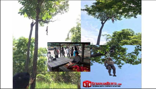 Pria Misterius Gantung Diri di Pohon Petai Setinggi 15 Meter Di Subang