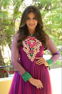 Actress Pooja Jhaveri Latest Stills in Purple Salwar Kameezt at Dwaraka Success Meet  0165.JPG