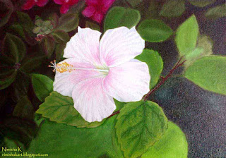 hibiscus flower oil painting by nimisha k