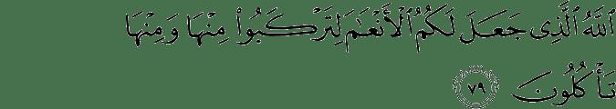 Surat Al Mu'min Ayat 79