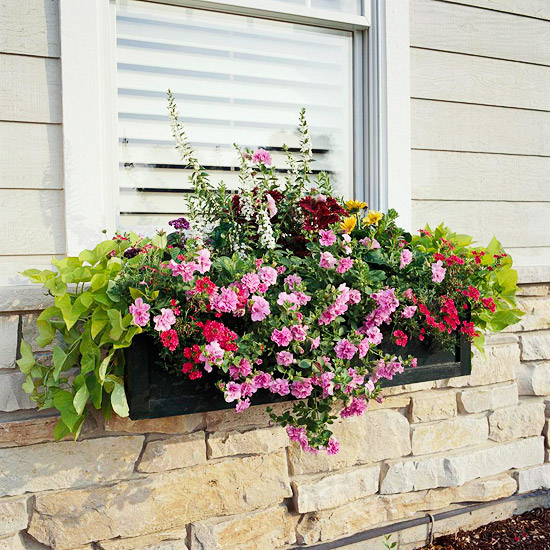 My Enchanting Cottage Garden: 10 Easy, Beautiful Window ...