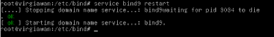 Cara install DNS server beserta konfigurasinya