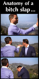 "Anatomy of a bitch slap from ""Million Dollar Listing - Los Angeles"" cast members Josh Flagg and Josh Altman."