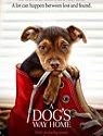 A Dogs Way Home (2019)