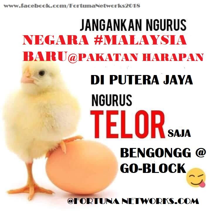 Di Malaysia Harga Telur Ayam Makin Melambung Tinggi, Ada Apa Sebenarnya?