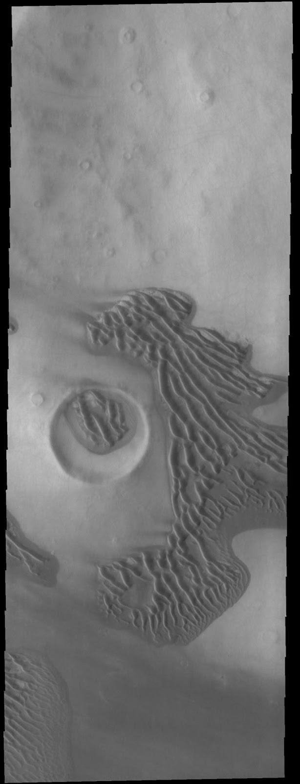 DUNAS EN LAS LLANURAS DE TERRA SIRENUM EN MARTE FOTOGRAFIADAS POR LA SONDA MARS ODYSSEY EL 22 MARZO 2017