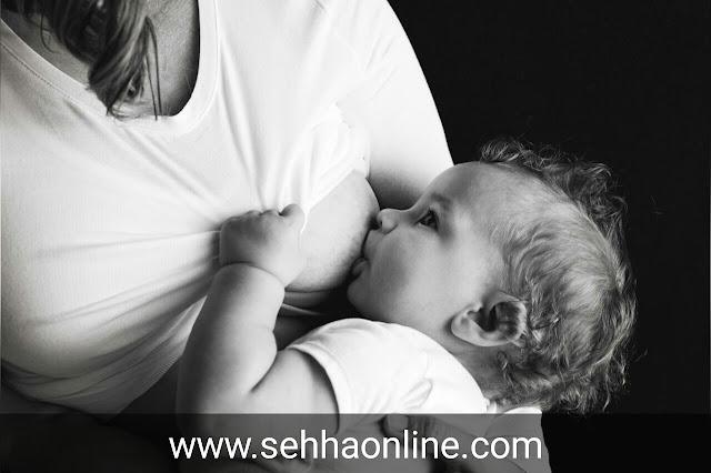 اكلات تدر الحليب، الرضاعة، حليب الام، رضاعة الطفل، اكل لزيادة حليب الام، Dairy products, Breast feeding, Mother's milk, Breastfeeding baby, Eat to increase breast milk,