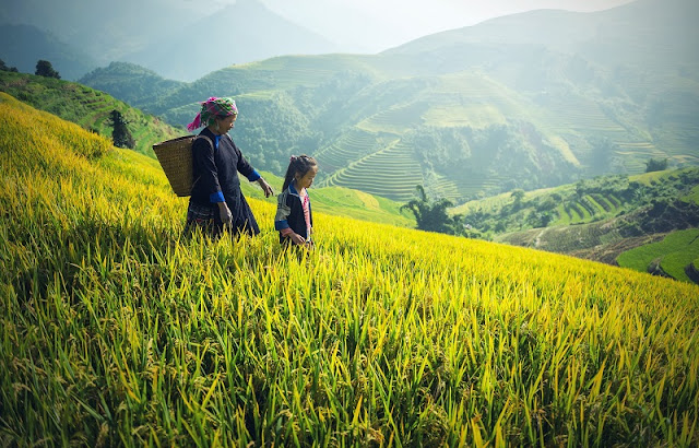 Sapa - Attractive destination from resort to adventure tourism 2