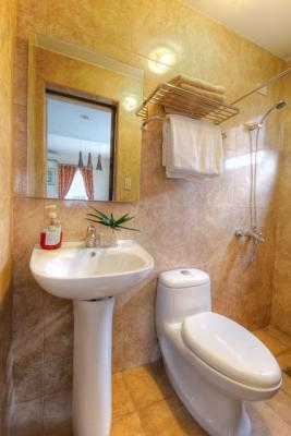 Kitchen Sink Materials Drain Installation Olive Model House Of Parc Regency Residences Pro ...