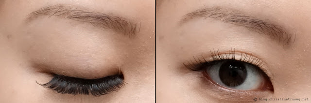 SocialEyes - Let Your Eyes Do The Talking. SocialEyes Lush Lashes Review for Monolids.