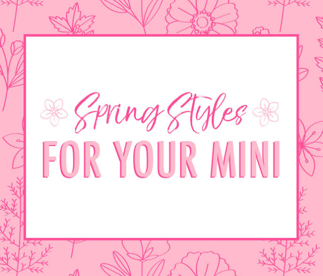 new spring styles for mini