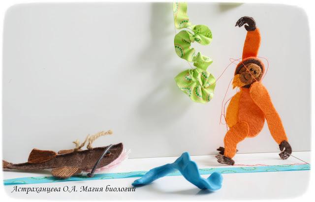 palchikovyj-teatr-orangutan-udilshhik-biomodelirovanie