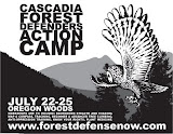 Forest Action Camp