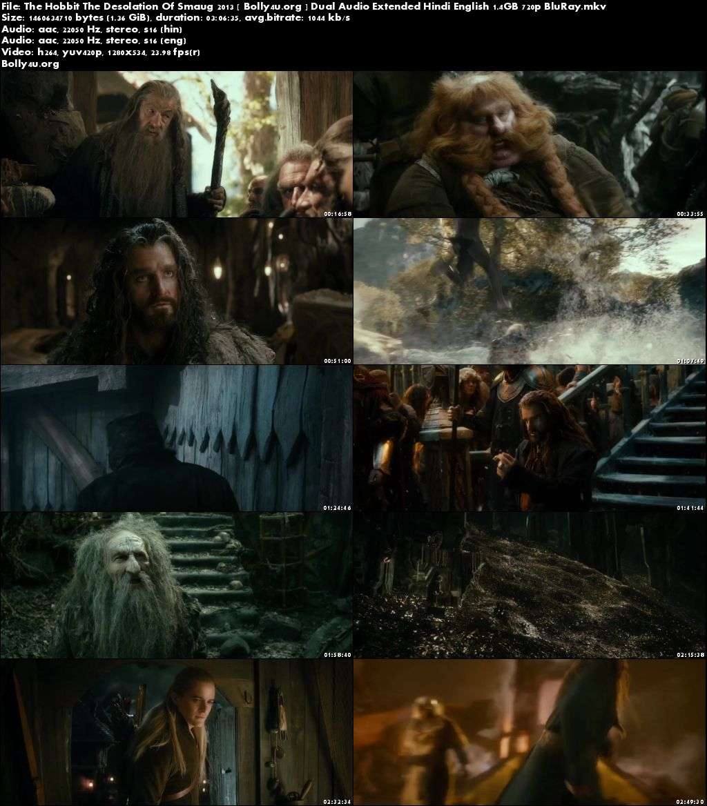 The Hobbit The Desolation Of Smaug 2013 BRRip Hindi Dual Audio Extended 720p Download