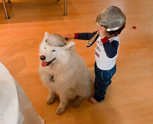 A kid with his dog wearing hats