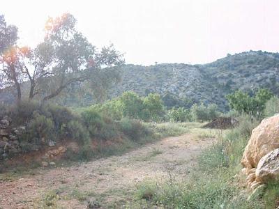 La pileta, camino, pantano de Pena, embalse, finca, almendros, olivos 31