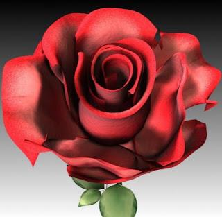Gambar Bunga Mawar 3D DP Wallpaper HD