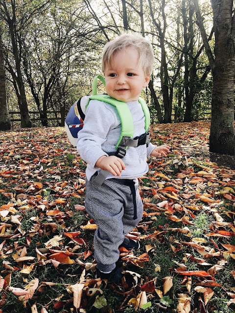 Autumn is Awesome with LittleLife*