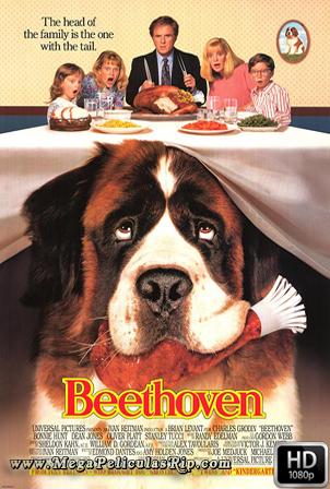Beethoven 1080p Latino