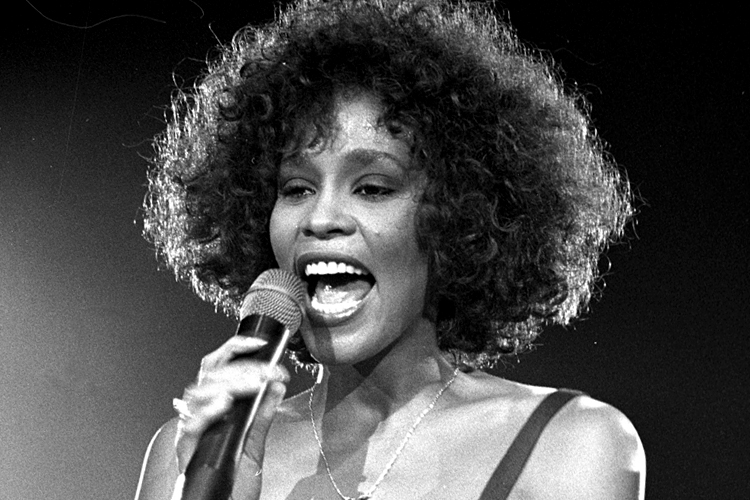 whitney houston have yourself a merry little christmas lirik - Whitney Houston Have Yourself A Merry Little Christmas
