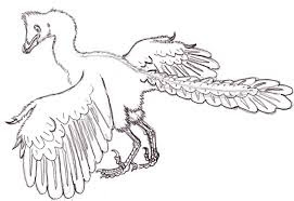 Cute Archaeopteryx Coloring Pages For Kids