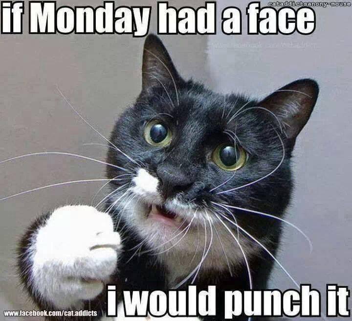 Fuck Monday 56