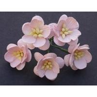http://www.artimeno.pl/ozdoby/7461-wild-orchid-crafts-cherry-blossoms-kwiaty-wisni-mix-pastelowy-10szt.html