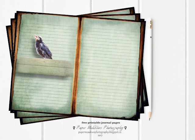 Paper Meadows Photography Blog-Free printable journal page set. Woodland Animals.