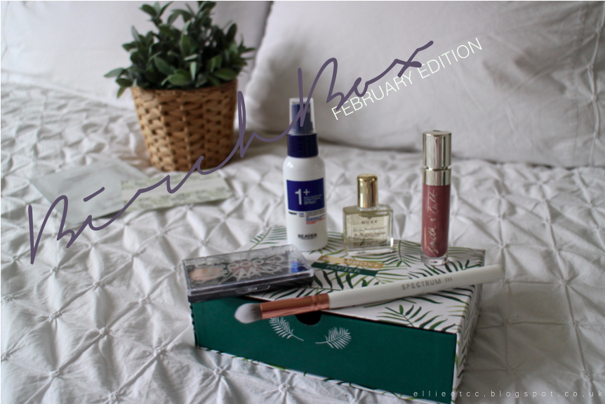 BirchBox, cosmetics, make up, beauty, skincare, skin, review, February BirchBox, NUXE, Spectrum Brushes, Spectrum C06, POP cosmetics, Smith and Cult, subscription box, monthly box