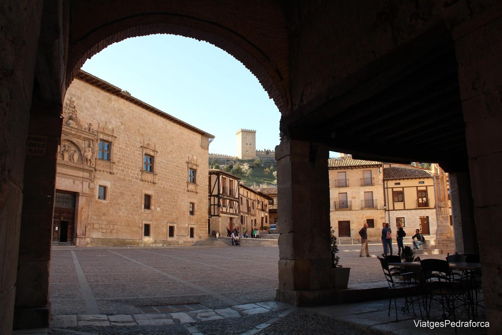 Plaza Mayor de Peñaranda de Duero, Burgos, Ribera del Duero, Castilla y León