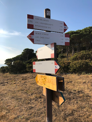 Trail indications at a major hiking and mountain biking intersection above Nisporto.