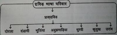 chhattisgarhi bhasha ka dravin parivar