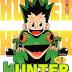 مانجا Hunter x Hunter تعود هذا الشهر