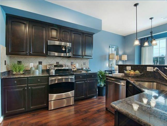 Kitchen Wall Color With Dark Cabinets Home Interior