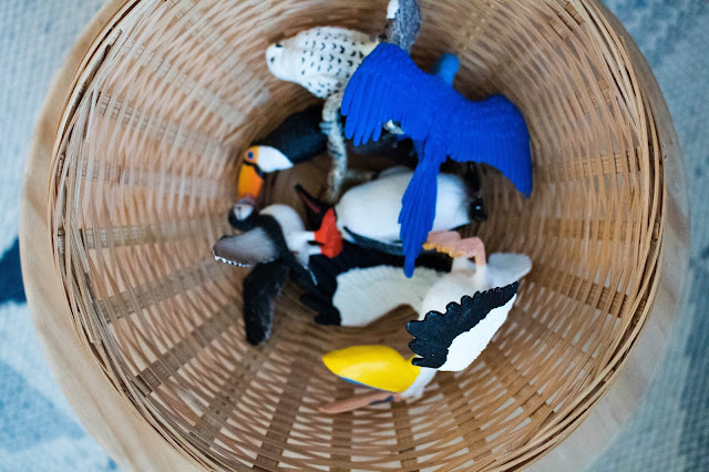 Easy Montessori toddler language work - a basket of birds