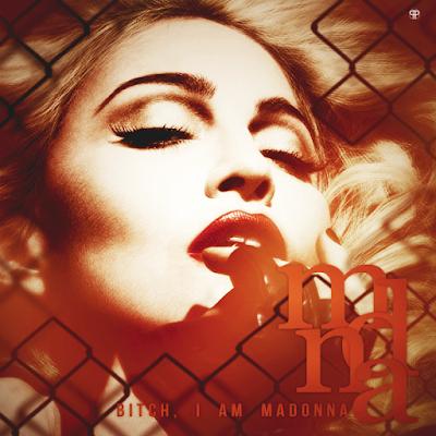 Bitch+I%2527m+Madonna+by+Gui+Lima.png