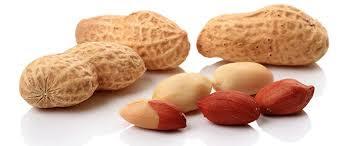 peanuts(moong phali) health benefits in urdu