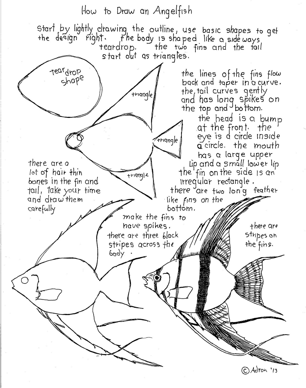 How To Draw Worksheets For The Young Artist How To Draw An Angelfish Worksheet