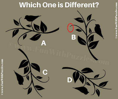 Answer of Which one is Different? Puzzle