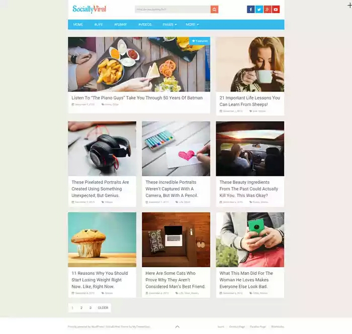 20+ Best Free Responsive WordPress Magazine Themes | be9ja entertainment