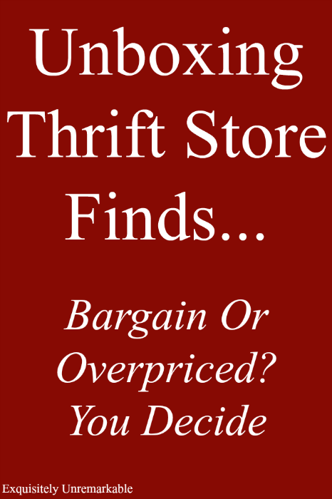 Unboxing Thrift Store Finds Bargain or Overpriced? You decide