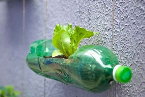 Sampah Plastik dan Kreatifitasnya
