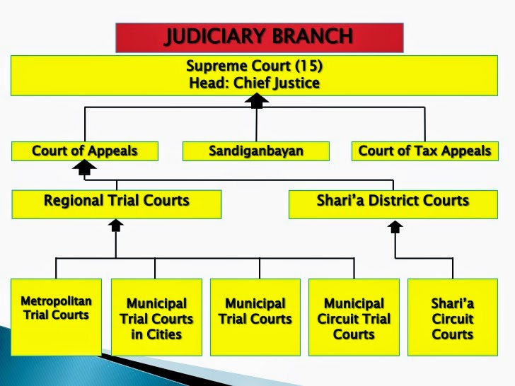 Law the heirachy of court