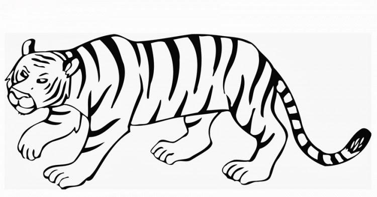 malvorlagen gratis  malvorlagen tiger