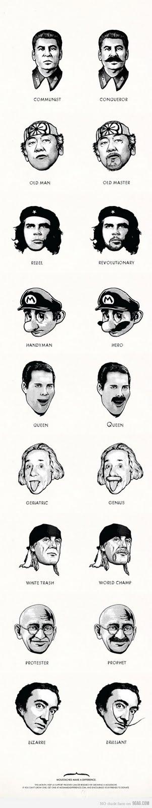 cuestión de bigotes