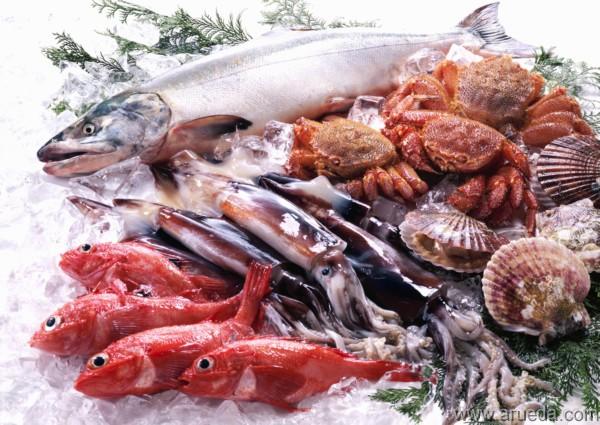 mundo fili los mariscos y los ni os cuando y como comerlos
