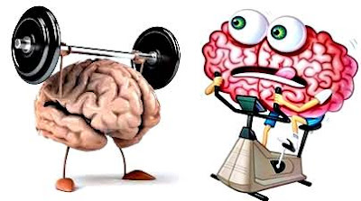 Neuro Pilates for our brain: exercises to apply (brain workout)