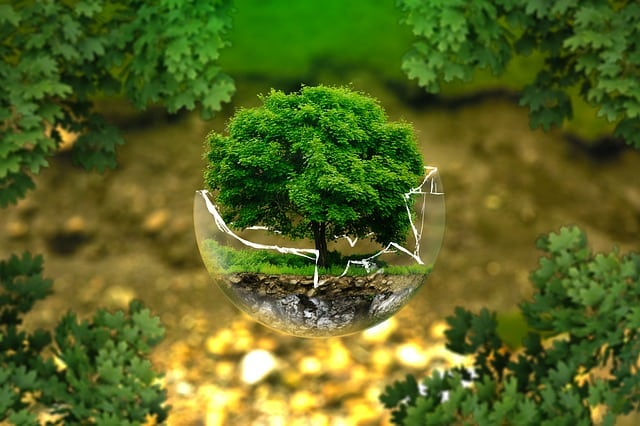 Environmental Education in Educational Institutions, The environmental scenario of India is very wide. Ours is a country highly diverse climatically geologically, edaphically, floristically, fanatically, ethnically, lingual, socially and economically.