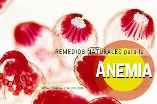 Remedios caseros para la anemia o descenso en el número de glóbulos rojo en la sangre