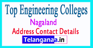 Top Engineering Colleges in Nagaland